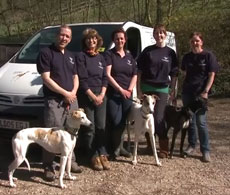 Greyhound Rescue West of England, Somerset