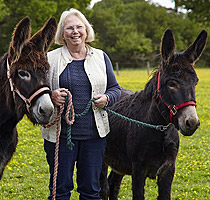 Heather Armstrong, Gambia Horse and Donkey Trust, Surrey