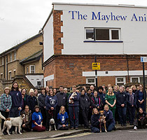 The Mayhew Animal Home, London