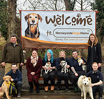 Merseyside Dogs Home