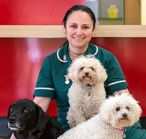 Rachel Radwell, Wood Green, The Animals Charity - Godmanchester, Cambridgeshire