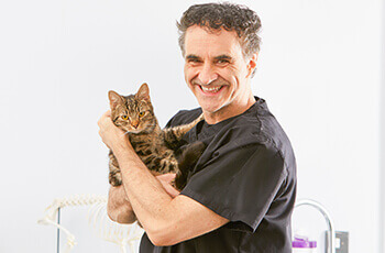 Supervet on choosing pet insurance