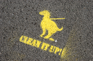 Debate: How should we tackle the problem of dog fouling?