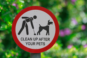 Debate: Use DNA testing to tackle dog fouling? Part 2