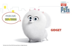 The Secret Life of Pets: What to know if you're buying a Pomeranian like Gidget