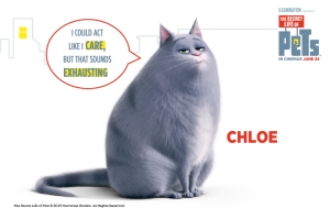 The Secret Life of Pets: Chloe loves her food! How can you keep your cat's waistline trim?