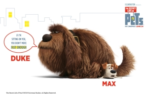 The Secret Life of Pets: Max has to learn to get along with Duke. How should you introduce two dogs to each other for the first time?