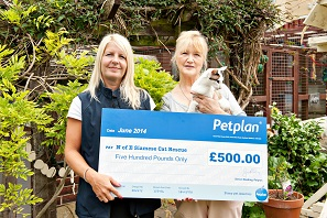 Petplan June prize draw winner: North of England Siamese Cat Rescue