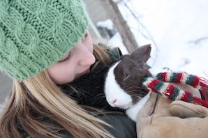 Preparing your rabbit for winter