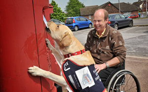 Hounds for Heroes update: Assistance dog bunker enters advanced training