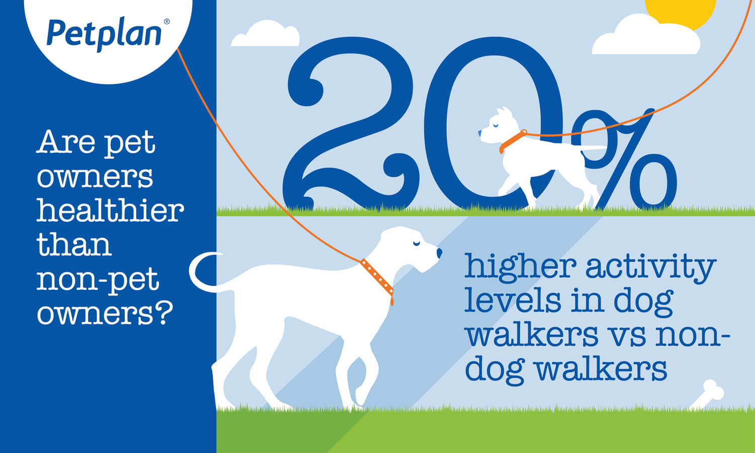 Infographic: 20% higher activity levels in dog walkers vs non-dog walkers img