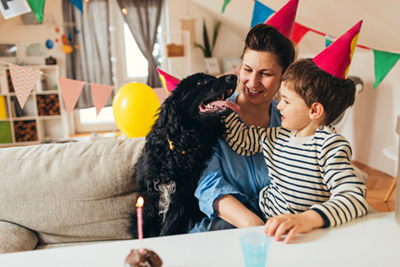 How to throw your pet a birthday party
