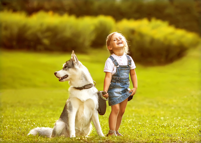 Why Pets and Toddlers are the best of friends