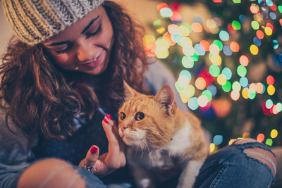 Keeping your pet safe this Christmas