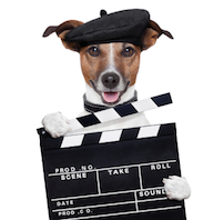 What's your favourite pet film?