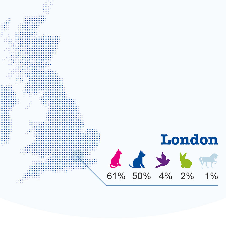 Figure 2: London's pet preferences ranked img