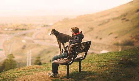 Dog and man on a bench