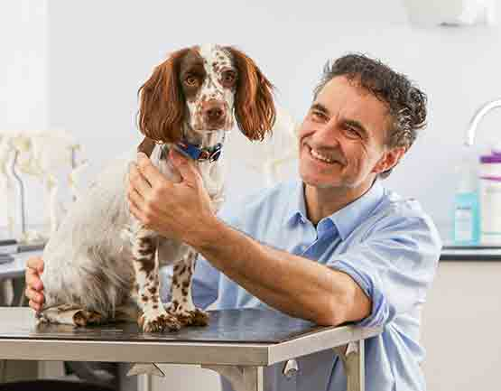 Supervet Noel Fitzpatrick with Terrier