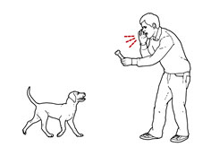 keep puppy training simple